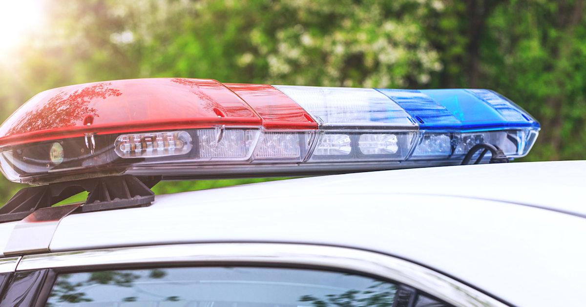 Twin girls, 3, found dead in car in Georgia on 90-degree day