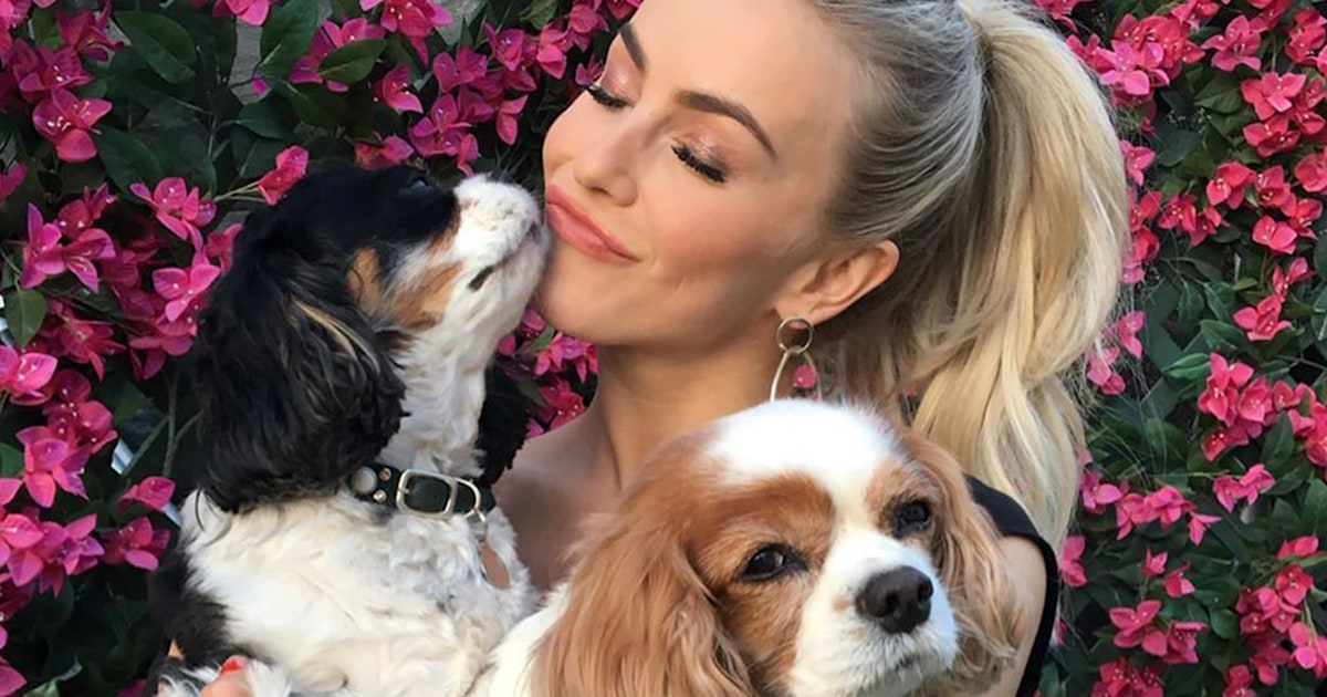 Julianne Hough mourns the death of her 2 beloved dogs: 'I love you forever'
