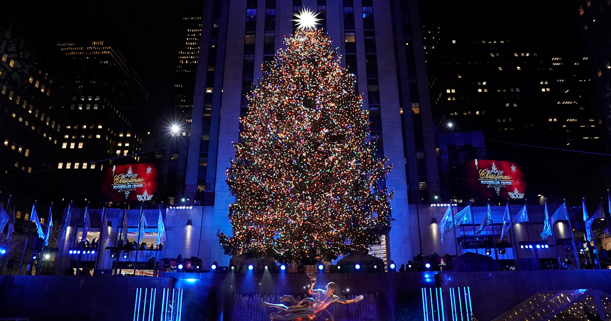 The 2019 Rockefeller Center Christmas tree has been chosen! Here's the 1st look