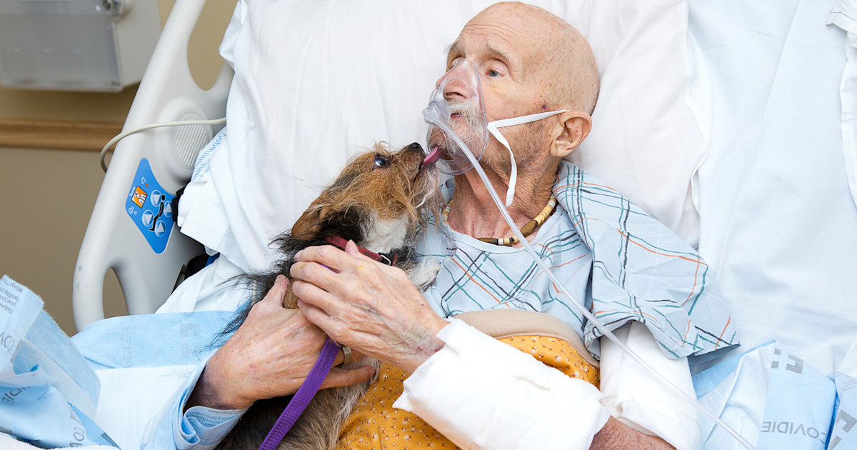 Vietnam veteran in hospice care sees beloved dog 'one last time'