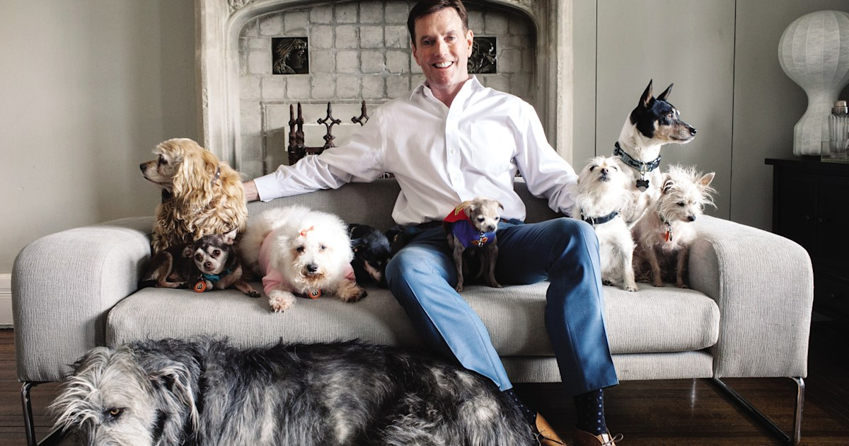 Meet the man who fills his home with senior and special needs pets