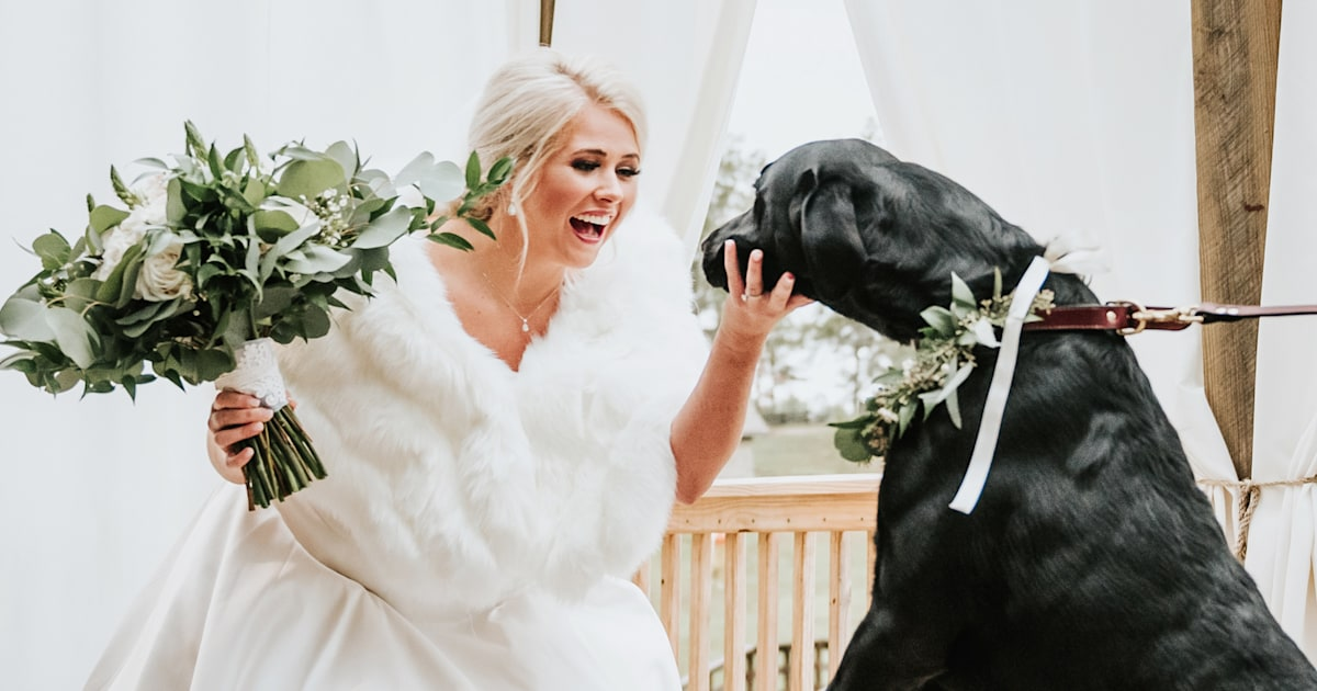 Bride has 'first look' photo shoot with her beloved dog