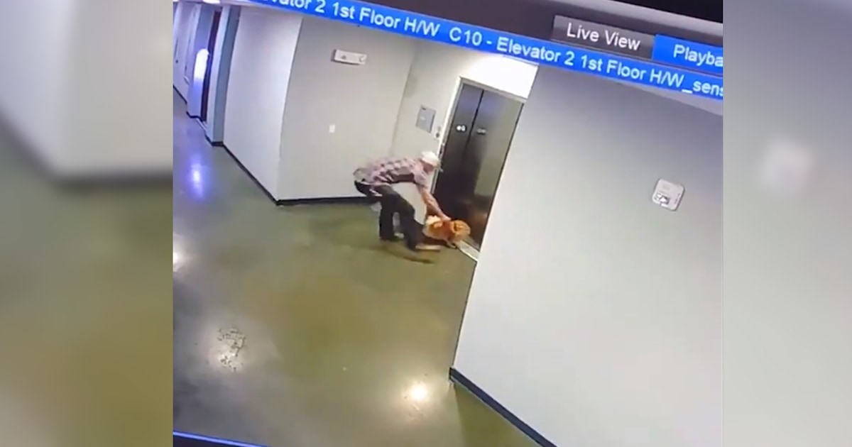 Harrowing video shows man saving dog after its leash is caught in an elevator