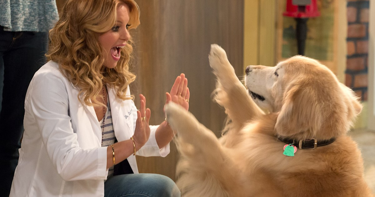 'Fuller House' dog Cosmo has died following surgery: 'We'll miss him forever'