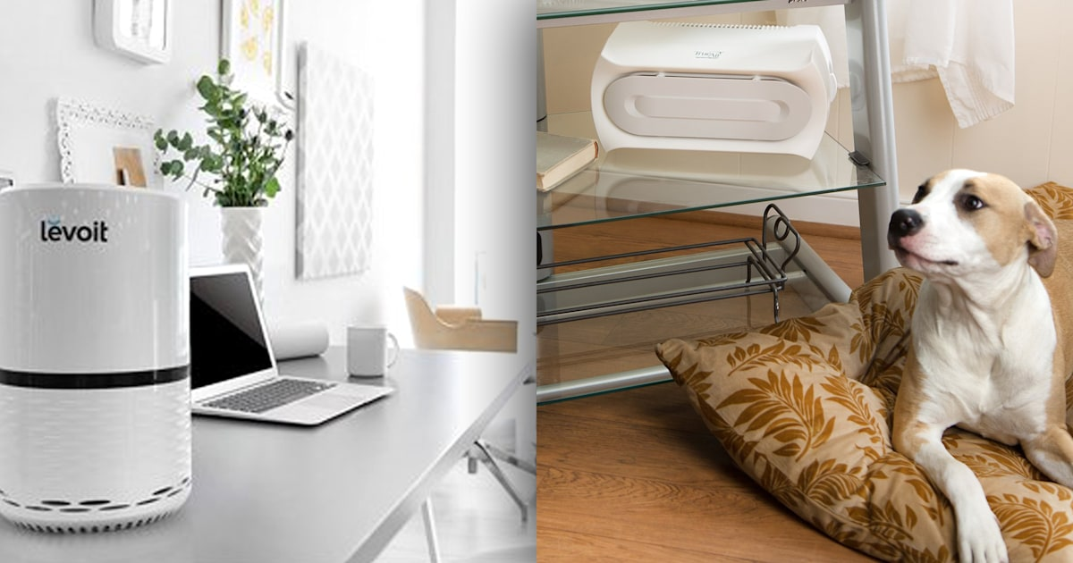 9 air purifiers to keep your dorm or at home classroom feeling fresh