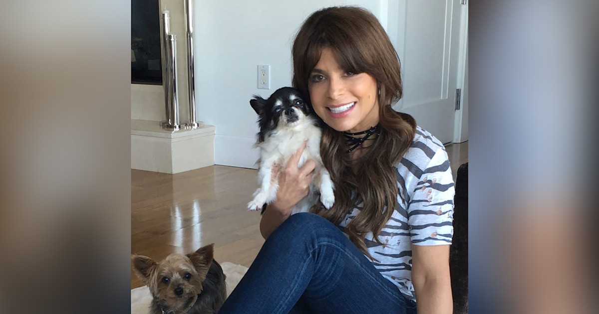 'My precious angels': 2 of Paula Abdul's dogs die in the same week