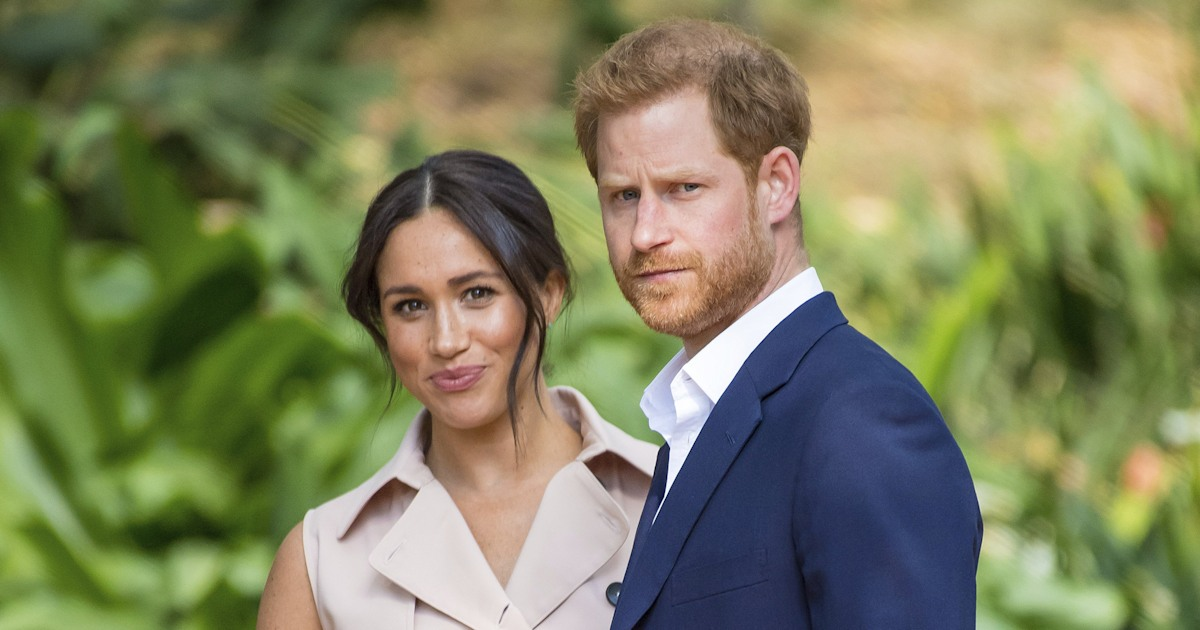 Meghan and Prince Harry's 2 dogs make surprise appearance in new video