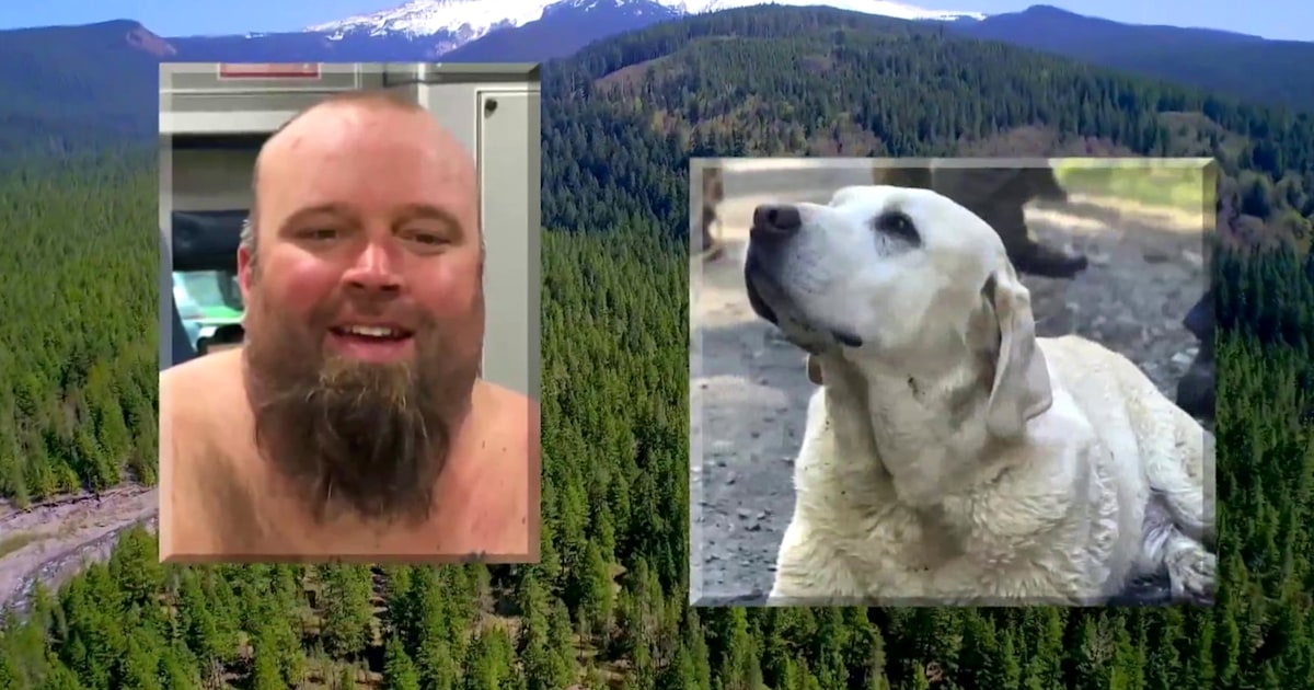 Father, 7-year-old child and dog rescued after 48 hours in Mount Hood ravine