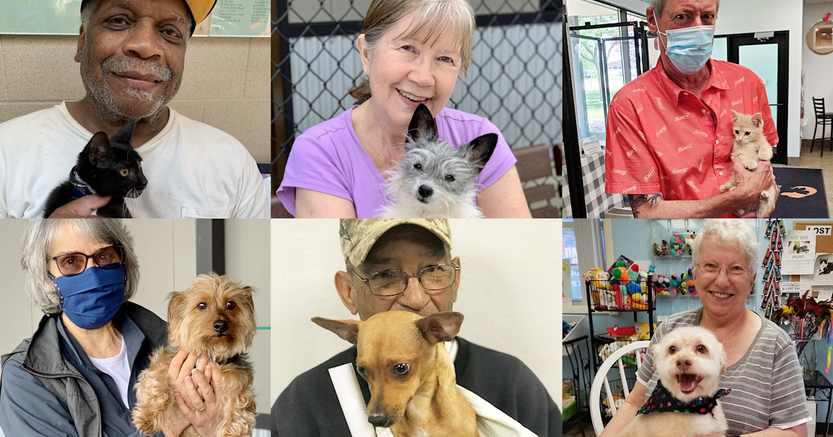 Pets for the Elderly helps seniors adopt and keep pets amid pandemic