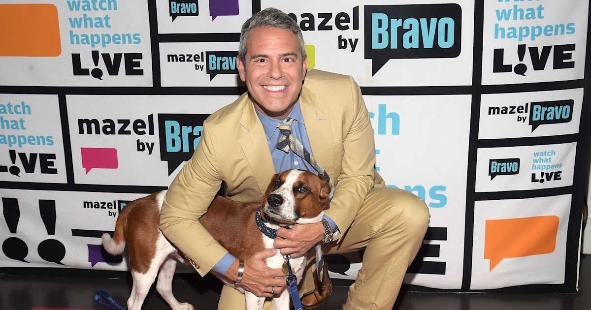 Andy Cohen happily reunites with the rescue dog he re-homed after 7 years