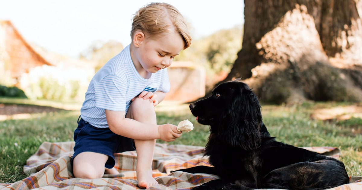 Prince William and Kate Middleton's beloved dog Lupo dies: 'We will miss him so much'