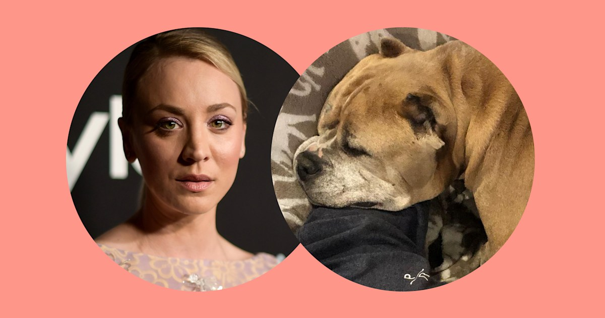Kaley Cuoco's dog Petunia dies just a few months after being adopted
