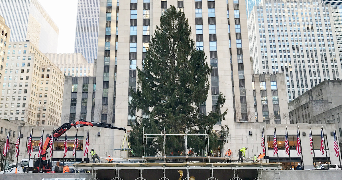 How to safely visit the Rockefeller Center Christmas tree this year