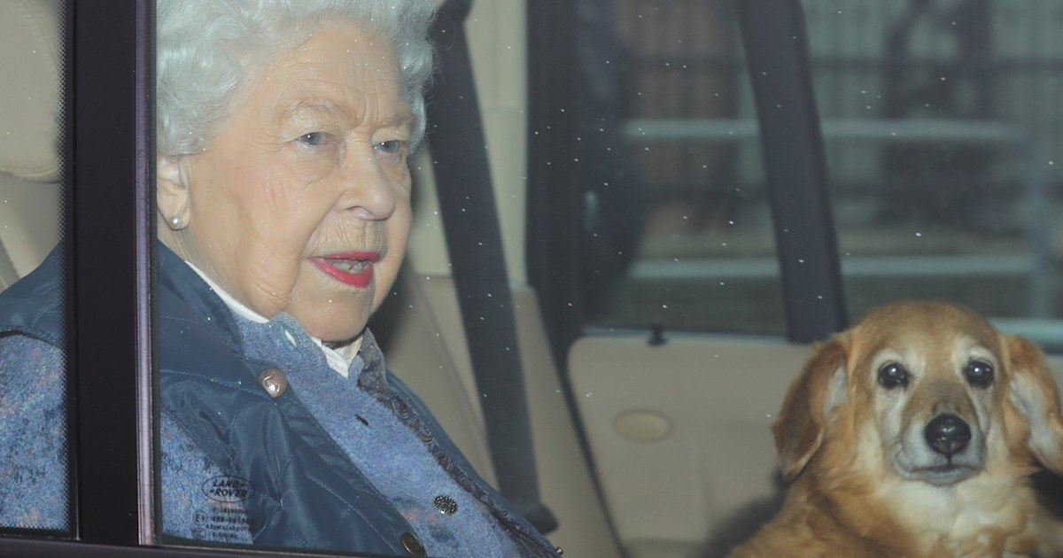 Queen Elizabeth's beloved dorgi Vulcan dies, leaving her with just 1 dog