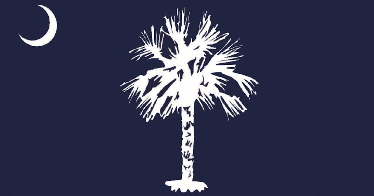 South Carolina S New Proposed State Flag Design Prompts Backlash