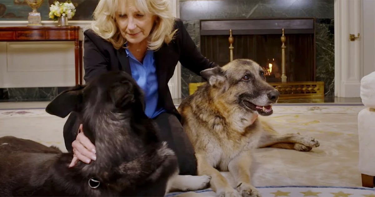 Jill Biden (and her dogs) promote mask-wearing in new PSA