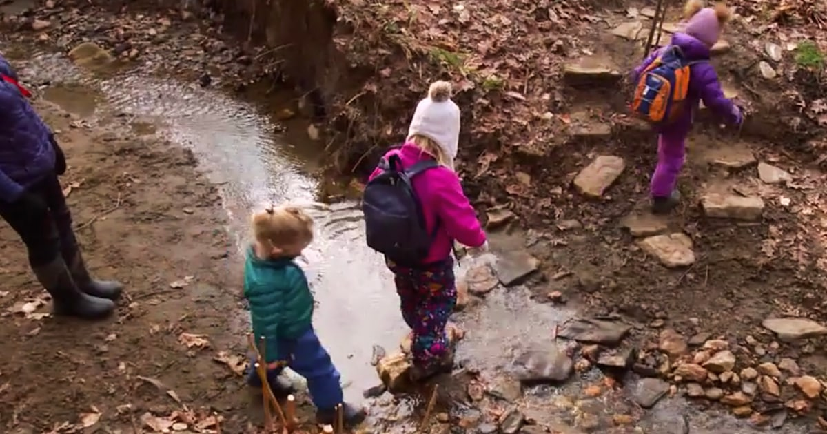 Why 'forest kindergarten' is getting popular in the pandemic