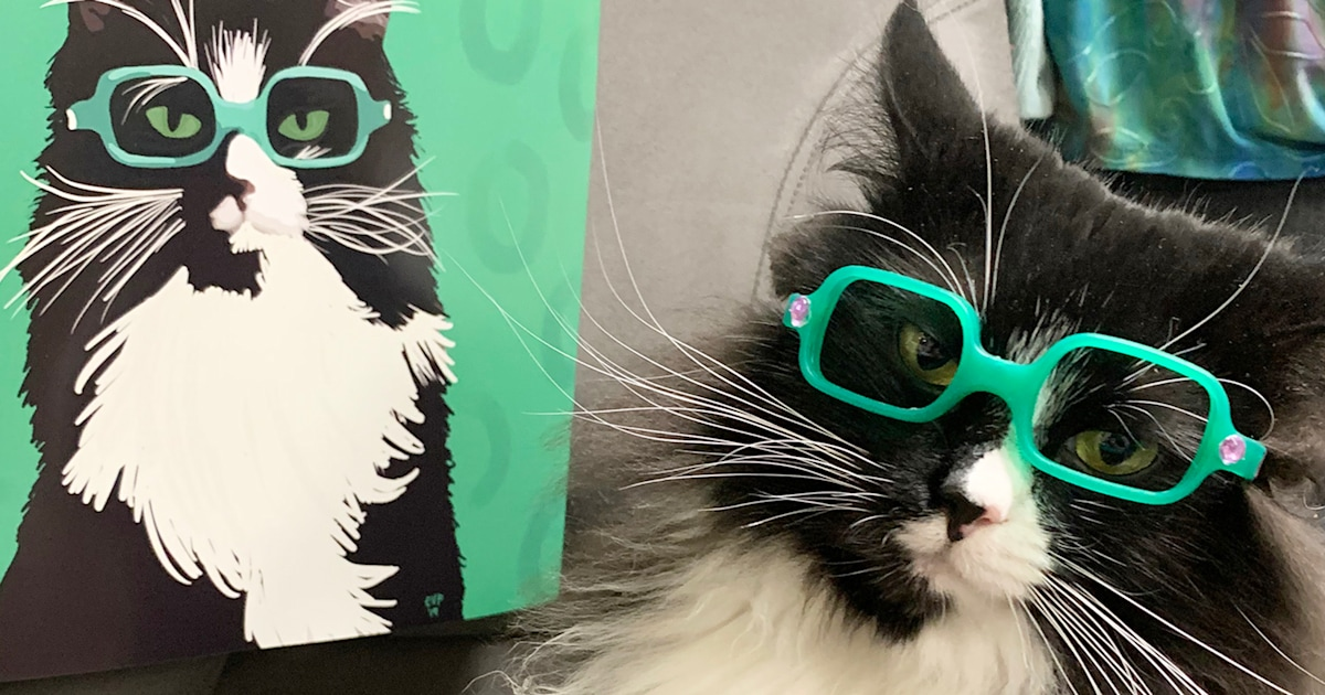 Truffles the Kitty wears glasses to help kids feel confident in them, too