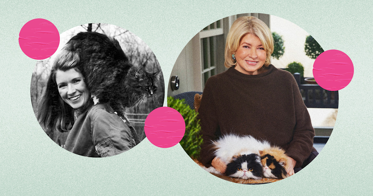 Martha Stewart's guide to being a fabulous cat owner