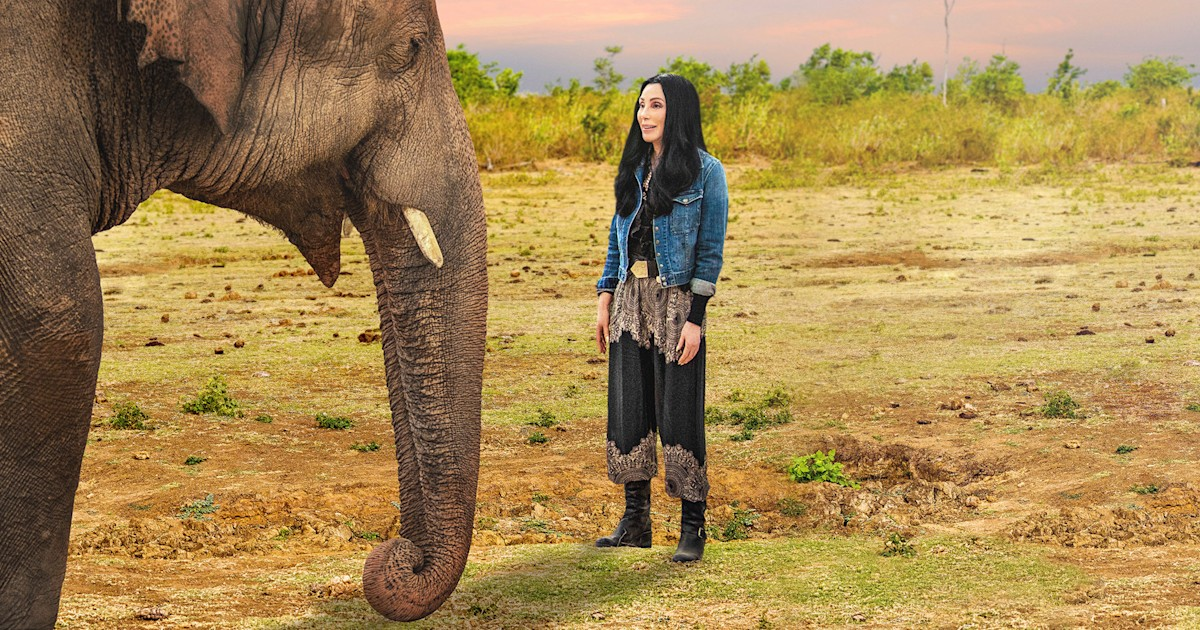 See Cher help 'world's loneliest elephant' in new documentary trailer