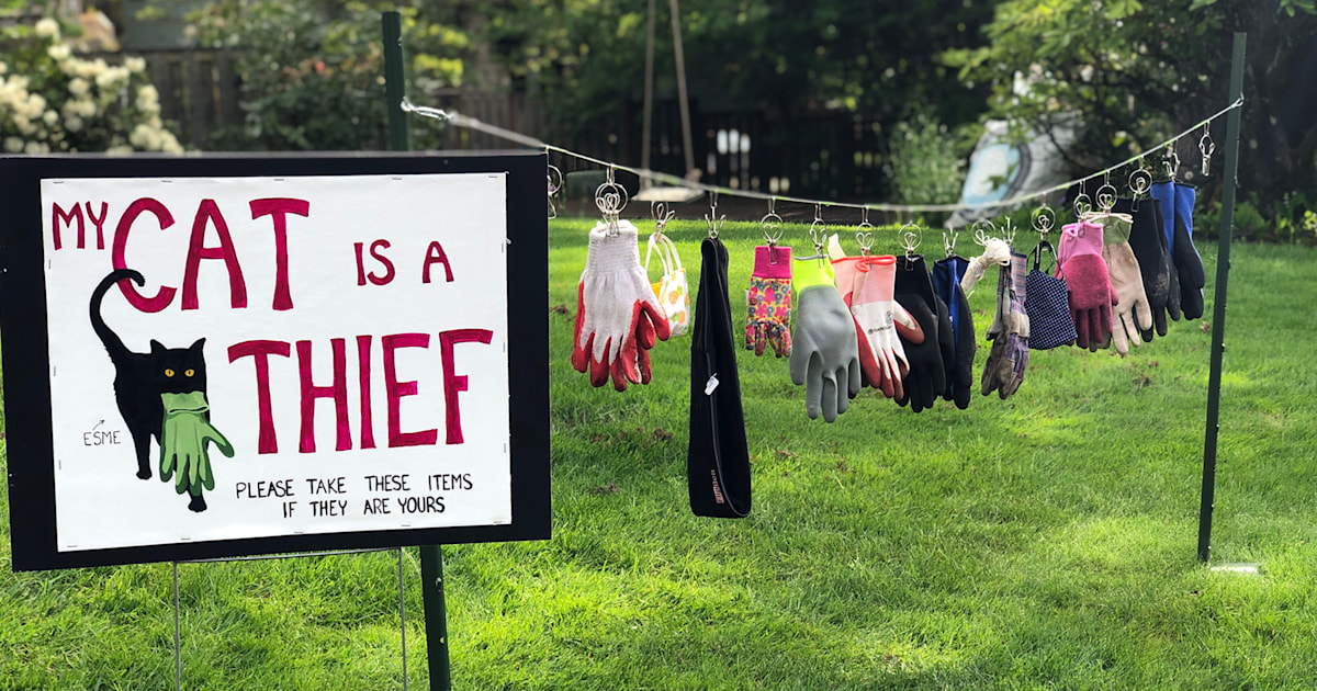 Oregon mom outs her cat as neighborhood thief with humorous yard display