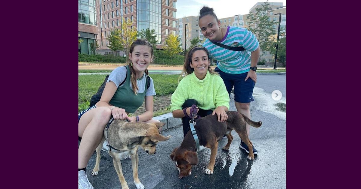 Gymnast Aly Raisman reunited with her missing dog