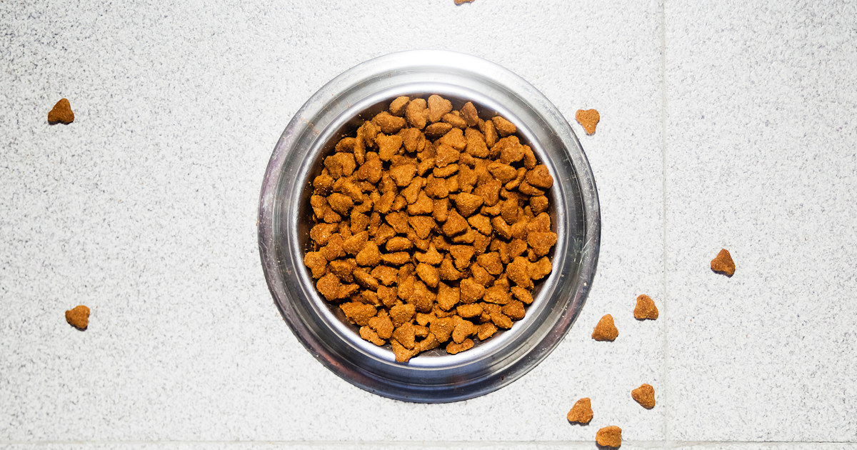 More than 130 dog deaths, 220 illnesses linked to company's pet food, FDA warns