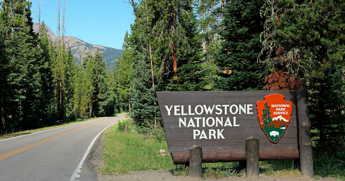 Woman is burned while rescuing her dog from Yellowstone hot spring