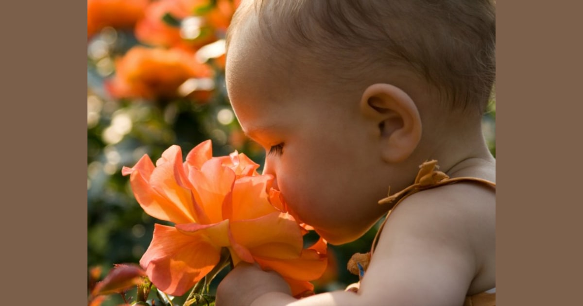 Spring Baby Names: The Best Baby Names Inspired By Spring