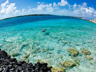 Image: Snorkeling in the Bahamas