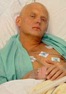 IMAGE: Alexander Litvinenko