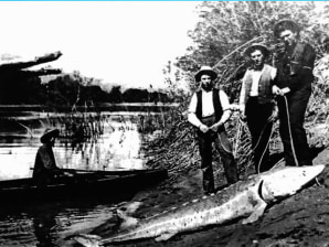 kootenai personals Moses lake admin/office - craigslist cl  kootenai county (spk  coeur d alene, idaho) pic map hide this posting restore restore this posting favorite.