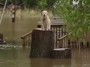 Flood cuts major highway