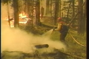 The Yellowstone Fires of 1988