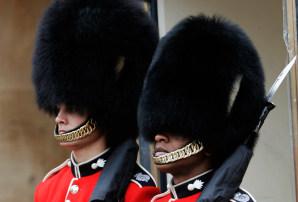 U K  army to reconsider bearskin hats - World news - Europe
