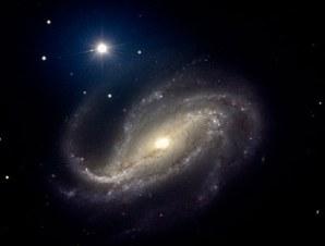 Image: NGC 613
