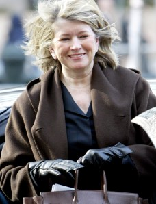 scandals martha stewart and the imclone Sec charges martha stewart the commission further alleges that stewart and bacanovic subsequently created an alibi for stewart's imclone sales and concealed.