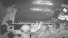 July 6: Warning: Graphic content. Security camera footage from June 24th allegedly shows Florida State University freshman quarterback De'Andre Johnson punching a woman at a nightclub in Tallahassee, Florida.�(Other)