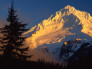 Alpenglow on a Snow Covered Mountain