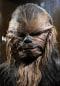 Image: Wookie