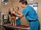 Image: Veterinarian visit