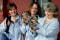 Image: Katrina cats
