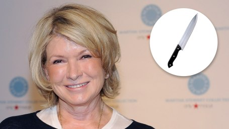 martha stewart brand crisis Martha stewart 'insists on nine personal assistants and expensing everything' despite brand's increasing woes stock now trades under $5 - from high of $36 in 2005 she has homes in maine, manhattan.
