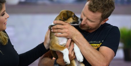 Pets & Animals: Funny Photos, Cute Animal Videos & Pet News