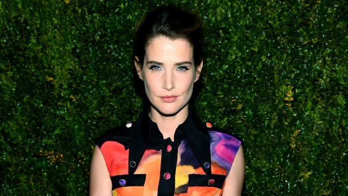 Cobie Smulders today