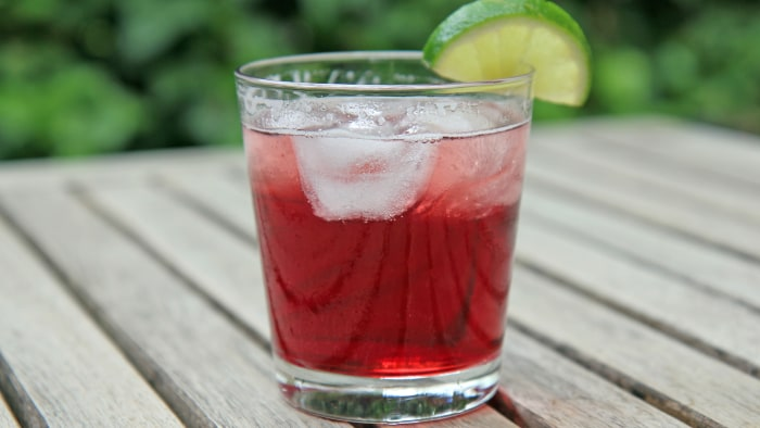 Cran-Ginger Fizz cocktail