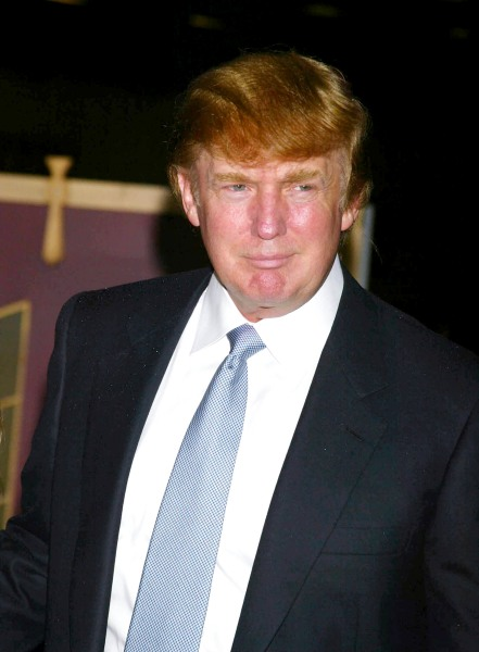 style donald trumps hair defended explained words