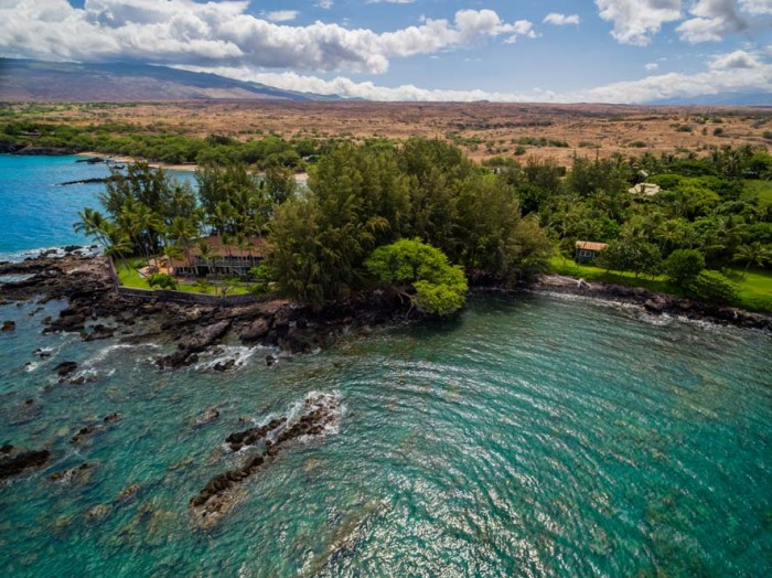 Young Real Estate Agent Big Island Hawaii