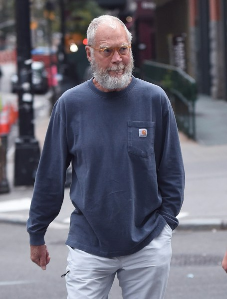 David letterman facial hair
