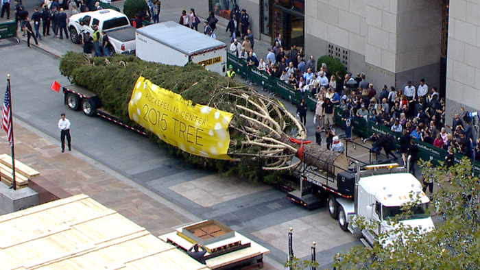 2015 Rockefeller Center Christmas tree